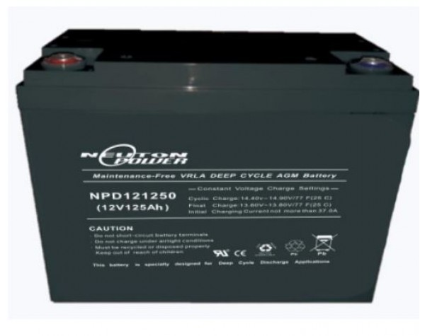 Neuton Power 120ah Agm Battery